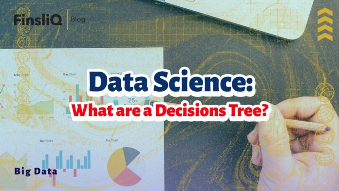 What are Decisions tree in Data Science?